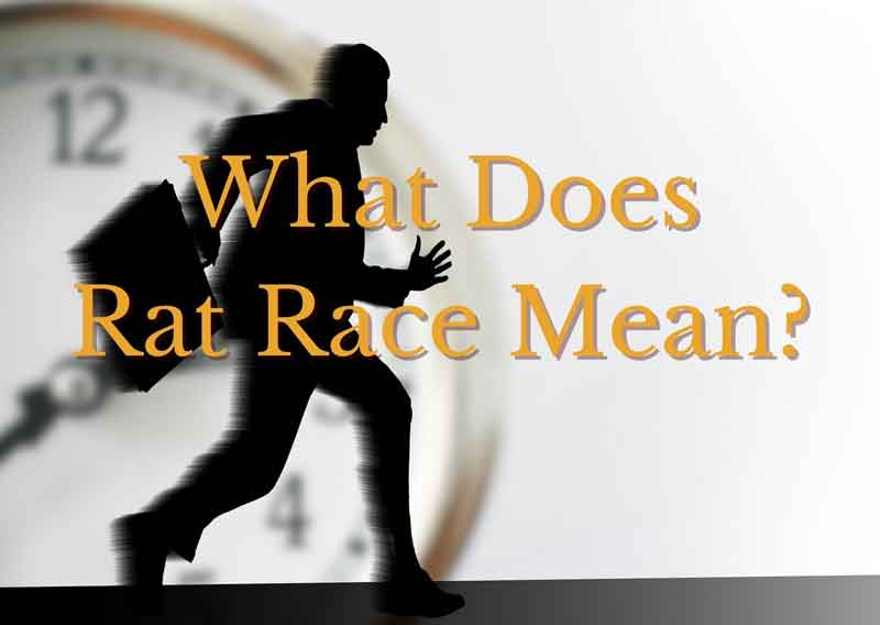 what-does-rat-race-mean