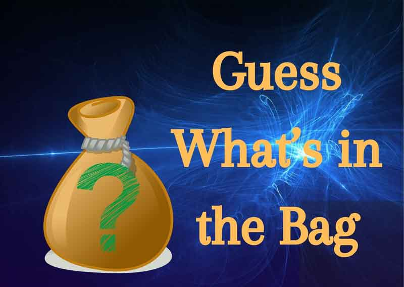 Guess-What's-in-the-Bag
