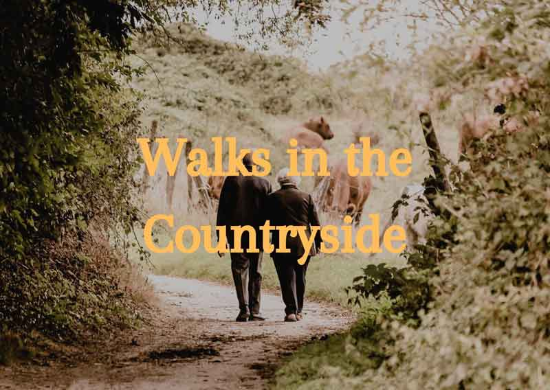 Walks-in-the-Countryside